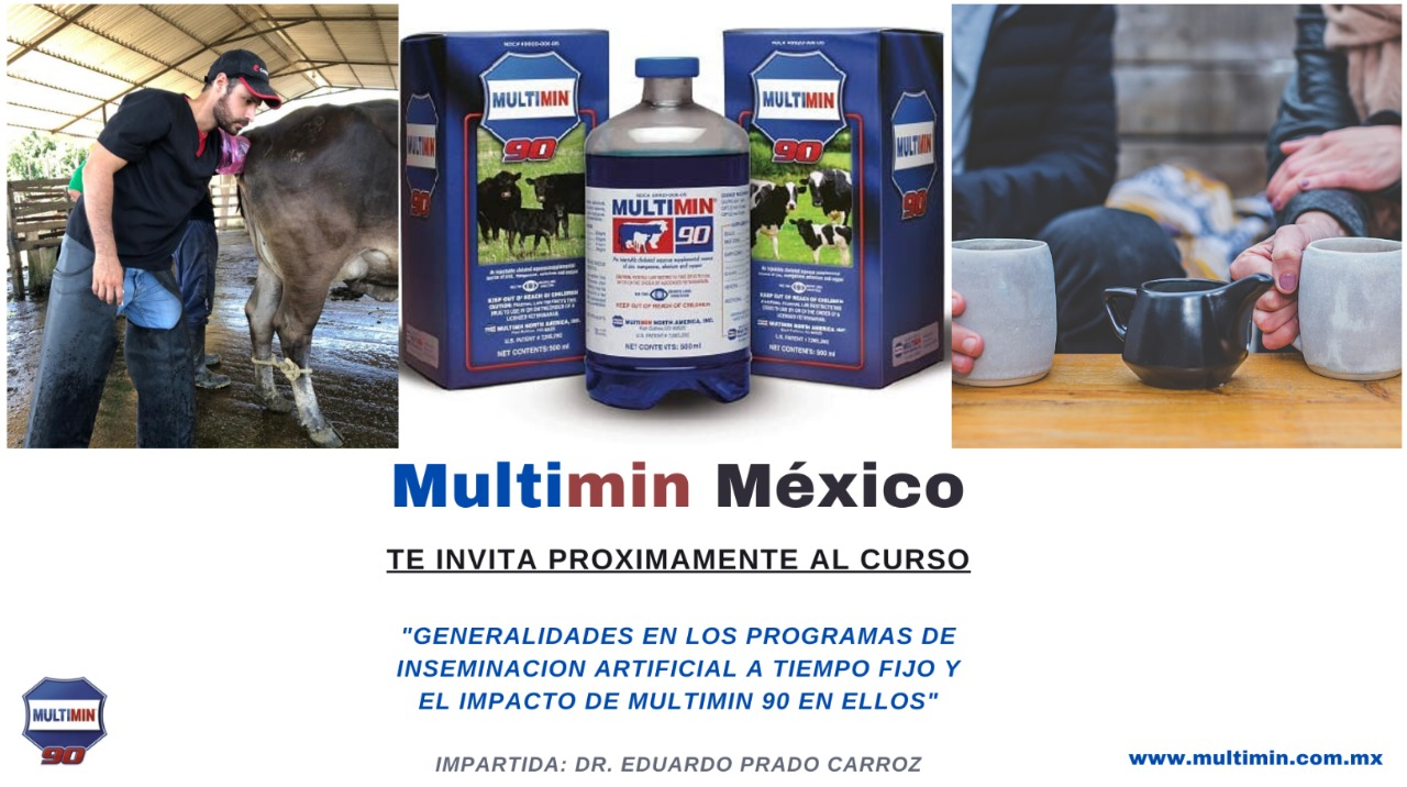 Multimin mexico